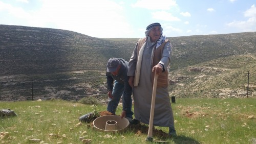 COCOON Planting Technology to Grow Trees in Arid Conditions: Pilot Project in the West Bank, Palestine
