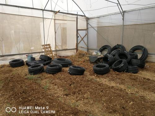 العمل الزراعي ينهي توزيع مدخلات إنتاج لتعاونية زراعية شبابية