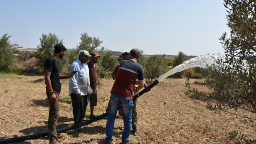 التصحر يتمدد في الضفة والقطاع... واستصلاح الأراضي هو الحلّ