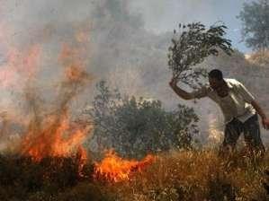 مستوطنون يضرمون النار في أراضي بلدة قفين بمحافظة طولكرم
