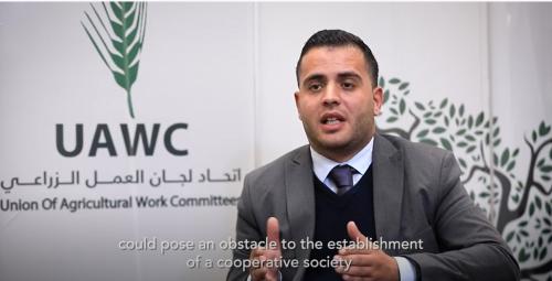 واقع العمل التعاوني في فلسطين