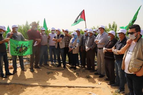 العمل الزراعي وحركة الفلاحين ينفذون زيارة ميدانية للمزارعين شرق غزة