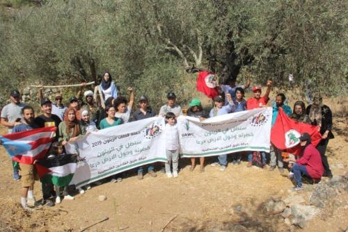 العمل الزراعي في فلسطين يطلق حملة ( سنظل في الزيتون خضرته وحول الأرض درعا )  لقطف الزيتون