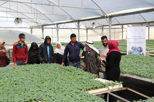 العمل الزراعي ينفذ زيارات تبادلية بين المزارعين الرياديين في قطاع غزة