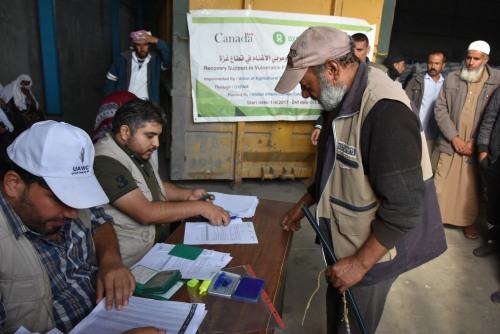 العمل الزراعي يوزع 476 طن أعلاف على مربي الأغنام بغزة