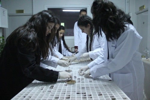 The Local Seed Bank organizes an educational day for the Rosary Sisters School Students