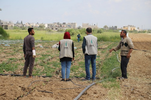 العمل الزراعي ينفذ زيارات ميدانية للمزارعين المستفيدين شرق غزة