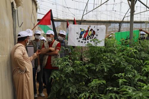 العمل الزراعي وحركة طريق الفلاحين الفلسطينية ينفذان زيارة تضامنية لمزارعي الدفيئات الزراعية برفح