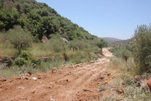 أحد  عشر ألف مستفيد من مشاريع العمل الزراعي واستصلاح وتأهيل 11 ألف دونم
