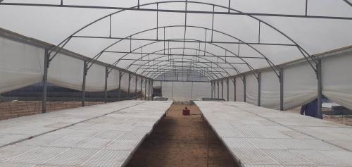 اتحاد لجان العمل الزراعي ينتهي من انشاء مشتل زراعي داخل حديقة الآمال الخضراء