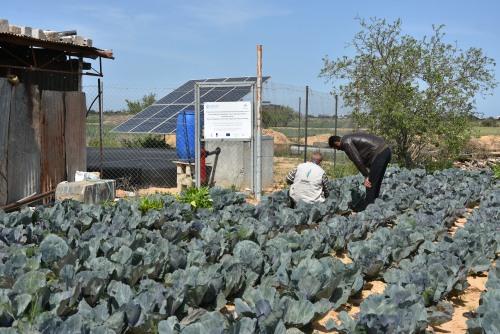 العمل الزراعي يقدم زيارات ارشادية للمزارعين في المناطق مقيدة الوصول