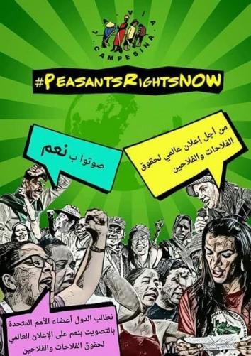 بيان صادر عن اتحاد لجان العمل الزراعي وحركة الفلاحين الفلسطينيين حول  مصادقة مجلس حقوق الإنسان على مسودة إعلان حقوق الفلاحين