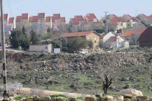 تقرير اعتداءات جيش الاحتلال ومستوطنيه على القطاع الزراعي الفلسطيني في الضفة الغربية وقطاع غزة\تشرين أول\2020