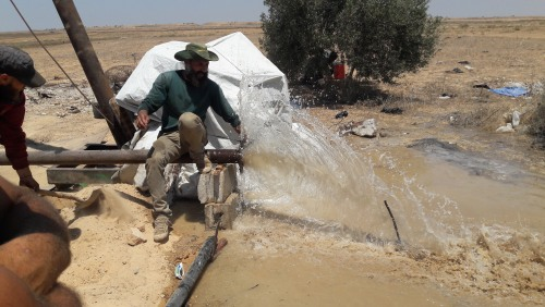 The Union of Agricultural Work Committees restores work to 1000 dunams in the East and North of the Gaza Strip