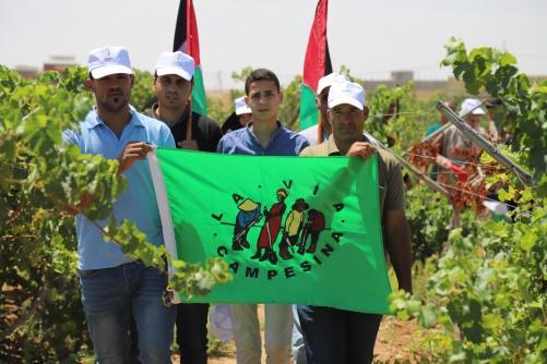 العمل الزراعي وحركة طريق الفلاحين الفلسطينية ينفذان جولة تضامنية مع مزارعي العنب بمحافظة خان يونس