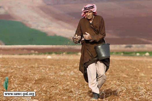 بيان صادر عن اتحاد لجان العمل الزراعي بمناسبة  يوم الفلاح العالمي