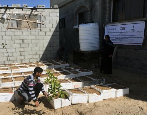 العمل الزراعي ينتهي من استصلاح 200 دونم وانشاء 16 حديقة منزلية بخان يونس