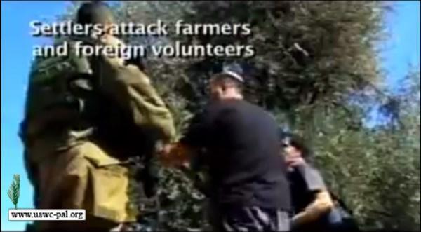 دعم صمود المزارعين