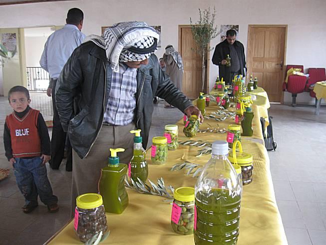نظم اتحاد لجان العمل الزراعي و الحملة الشعبية لمقاومة الجدار مهرجانا لزيت الزيتون في بيتا